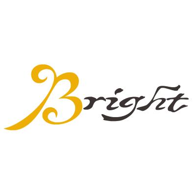 【Bright】平價飾品 玫瑰金耳環 流行手鍊 項鍊 925銀戒子 亮點飾品 點亮你
